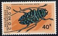 Skap-congo-dem_03_beetles_703-12.jpg-crop-200x123at412-427.jpg