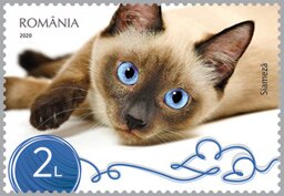 Colnect-6480-914-Siamese-Cat.jpg