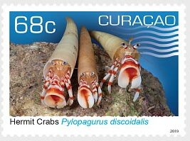 Colnect-5788-328-Hermit-Crabs.jpg