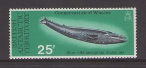 Colnect-1376-093-Blue-Whale.jpg