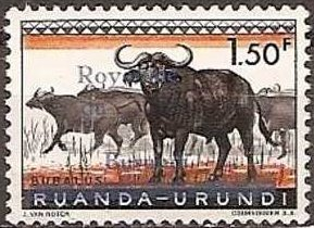 Colnect-899-264-African-Buffalo-Syncerus-caffer.jpg