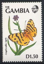 Colnect-2105-821-Butterfly-Amphicallia-tigris.jpg
