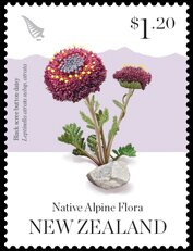 Colnect-5588-782-Native-Alpine-Flora-of-New-Zealand.jpg
