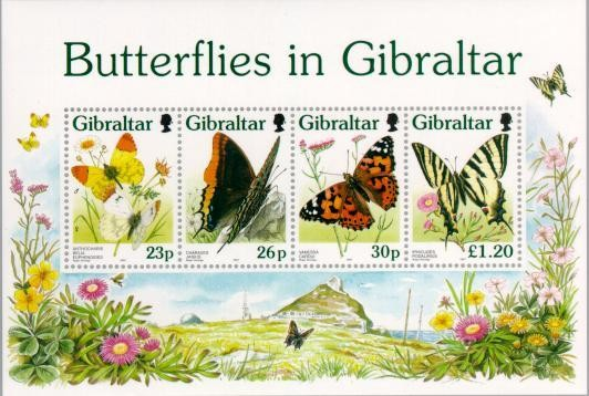 Colnect-120-854-Butterflies-in-Gibraltar.jpg