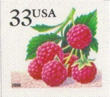 Colnect-201-443-Fruit-Berries-Raspberries.jpg