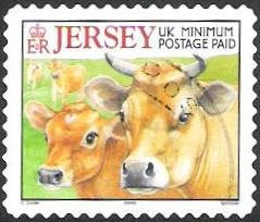 Colnect-4897-554-Title-Jersey-Cow-Bos-primigenius-taurus.jpg