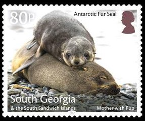 Colnect-4773-906-Antaractic-Fur-Seal--Mother-With-Pup.jpg