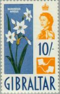 Colnect-120-024-Narcissus.jpg
