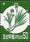 Colnect-2472-744-Green-onion.jpg