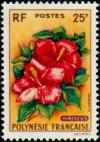 Colnect-1011-592-Hibiscus.jpg