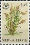 Colnect-2387-817-Rice-plants.jpg