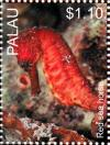 Colnect-4910-088-Red-Seahorse.jpg