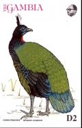 Colnect-5593-949-Congo-Peacock-Afropavo-congensis.jpg