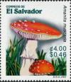 Colnect-1816-265-Amanita-muscaria.jpg