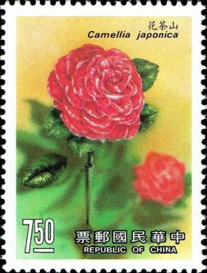 Colnect-4900-594-Japanese-camellia-Camellia-japonica.jpg
