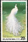 Colnect-1614-804-White-Indian-Peafowl-Pavo-cristatus.jpg