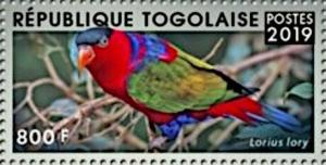 Colnect-5646-482-Black-capped-Lory-Lorius-lory.jpg