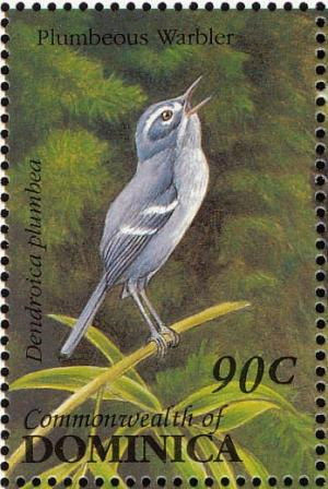 Colnect-1748-059-Plumbeous-Warbler%C2%A0Catharopeza-plumbea.jpg