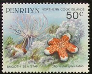 Colnect-1962-929-Granulated-Sea-Star-Choriaster-granulatus.jpg