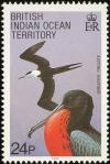 Colnect-1553-518-Great-Frigate-Bird-Fregata-minor-palmerstoni.jpg