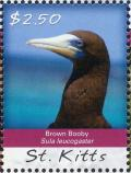 Colnect-3742-847-Brown-Booby-Sula-leucogaster.jpg