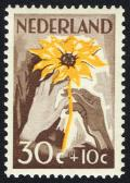 Colnect-2191-877-White-and-brown-hand-with-sunflower.jpg