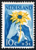Colnect-2191-878-White-and-brown-hand-with-sunflower.jpg