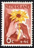 Colnect-2191-879-White-and-brown-hand-with-sunflower.jpg