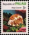 Colnect-2321-650-Map-Cowrie-Cypraea-mappa.jpg
