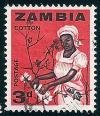 STS-Zambia-1-300dpi.jpg-crop-283x330at2242-288.jpg