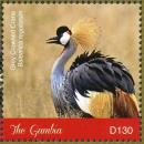 Colnect-5033-998-Grey-Crowned-Crane----Balearica-regulorum.jpg
