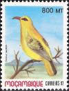 Colnect-1120-132-African-Golden-Oriole-Oriolus-auratus.jpg