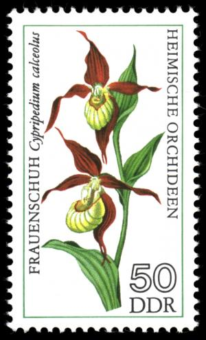Stamps_of_Germany_%28DDR%29_1976%2C_MiNr_2140.jpg