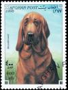 Colnect-3515-675-Bloodhound-Canis-lupus-familiaris.jpg