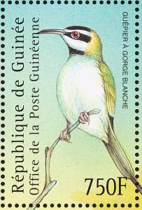 Colnect-3804-329-White-throated-Bee-eater-Merops-albicollis.jpg