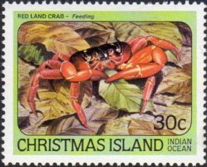 Colnect-3880-478-Christmas-Island-Red-Crab-Gecarcoidea-natalis-.jpg