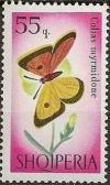 Colnect-452-955-Danube-Clouded-Yellow-Colias-myrmidone.jpg