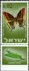 Colnect-2593-315-Two-tailed-Pasha-Charaxes-jasius.jpg