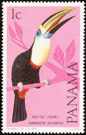 Colnect-1420-238-White-throated-Toucan-Ramphastos-tucanus.jpg
