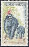 Colnect-241-392-Asian-Elephant-Elephas-maximus.jpg