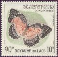 Colnect-310-848-Red-Lacewing-Cethosia-biblis.jpg