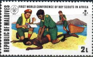 Colnect-3254-470-First-World-Conference-of-Boy-Scouts-in-Africa.jpg