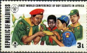 Colnect-3254-471-First-World-Conference-of-Boy-Scouts-in-Africa.jpg