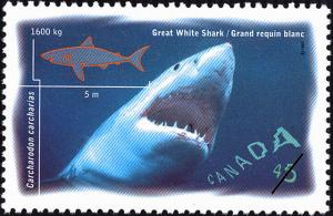 Colnect-588-601-Great-White-Shark-Carcharodon-carcharias.jpg