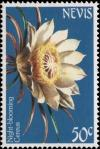 Colnect-3052-243-Night-blooming-Cereus.jpg