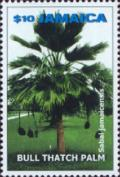 Colnect-3690-624-Sabal-jamaicensis---Bull-Thatch-palm.jpg