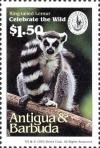 Colnect-4112-692-Ring-tailed-lemur.jpg