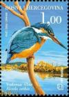 Colnect-536-312-Common-Kingfisher-Alcedo-atthis.jpg