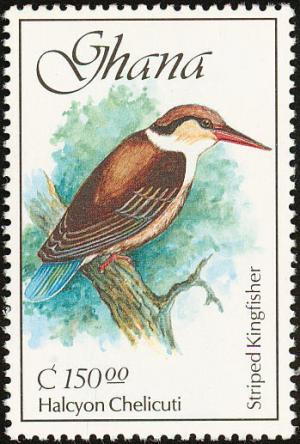 Colnect-1459-764-Striped-Kingfisher-nbsp-Halcyon-chelicuti-.jpg
