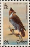 Colnect-1594-231-Ornate-Hawk-eagle-Spizaetus-ornatus.jpg